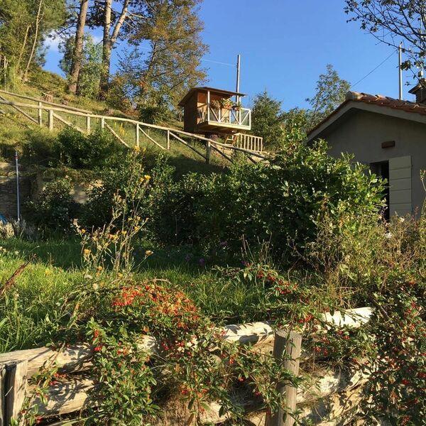 Ferienhaus Villa Sant'egidio (2624163), Cortona, Arezzo, Toskana, Italien, Bild 21